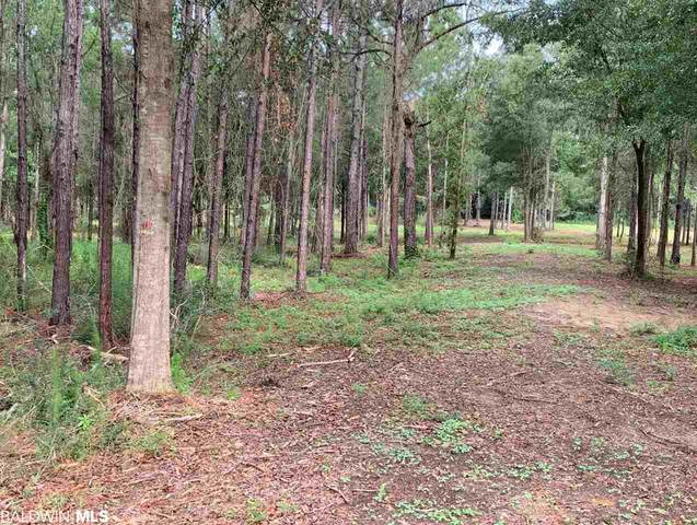 22877 County Road 87, Robertsdale, AL 36567 (MLS #299070) :: JWRE Powered by JPAR Coast & County