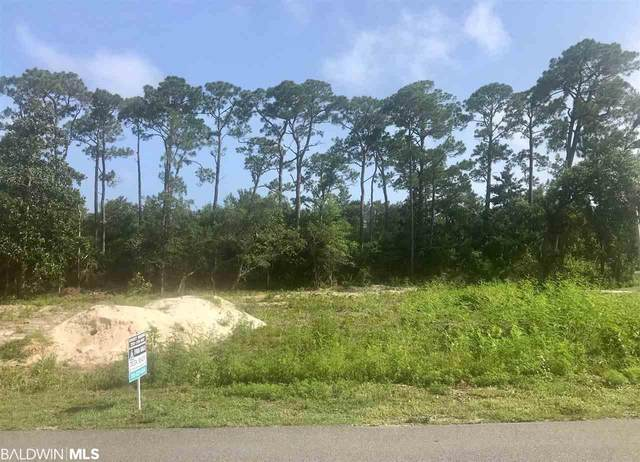 29730 Hayden Dr, Orange Beach, AL 36561 (MLS #299073) :: Dodson Real Estate Group