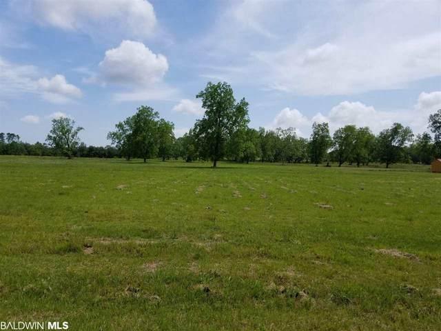 23030 S County Road 62, Robertsdale, AL 36567 (MLS #299265) :: Coldwell Banker Coastal Realty