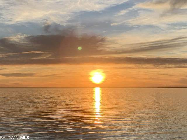 127 Blue Lagoon Drive, Gulf Shores, AL 36542 (MLS #299465) :: Gulf Coast Experts Real Estate Team