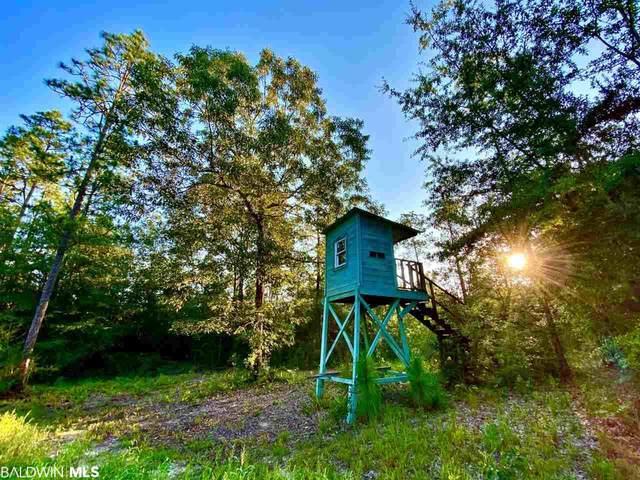 0 Highway 59, Bay Minette, AL 36507 (MLS #300589) :: JWRE Powered by JPAR Coast & County