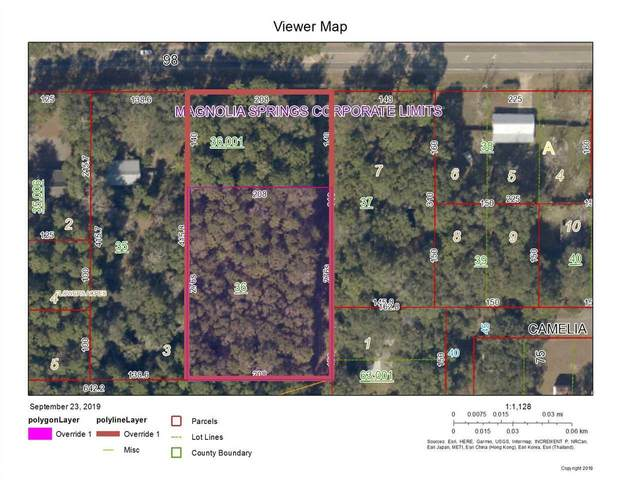 0 W Us Highway 98, Magnolia Springs, AL 36555 (MLS #301007) :: Dodson Real Estate Group