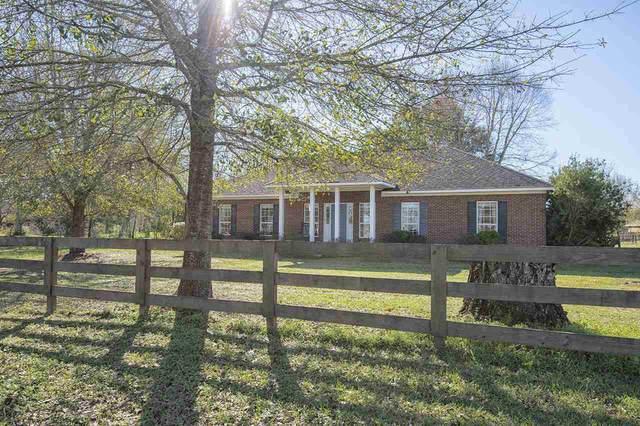 15612 Beasley Road, Foley, AL 36535 (MLS #301835) :: Elite Real Estate Solutions