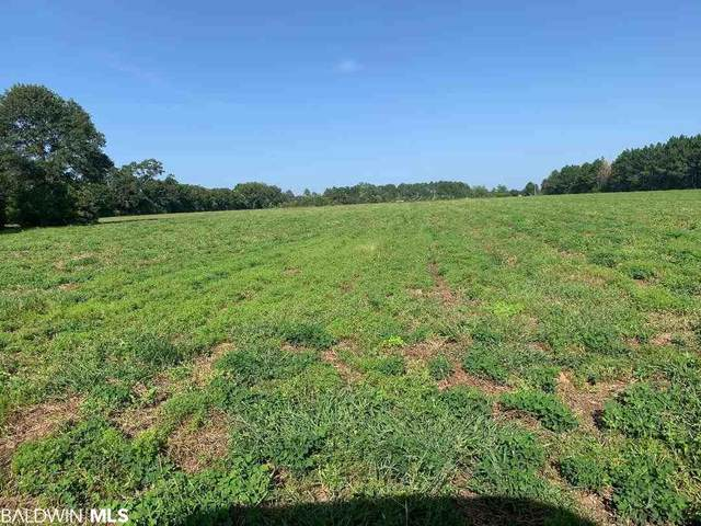 22755 S County Road 62, Robertsdale, AL 36567 (MLS #302162) :: Dodson Real Estate Group
