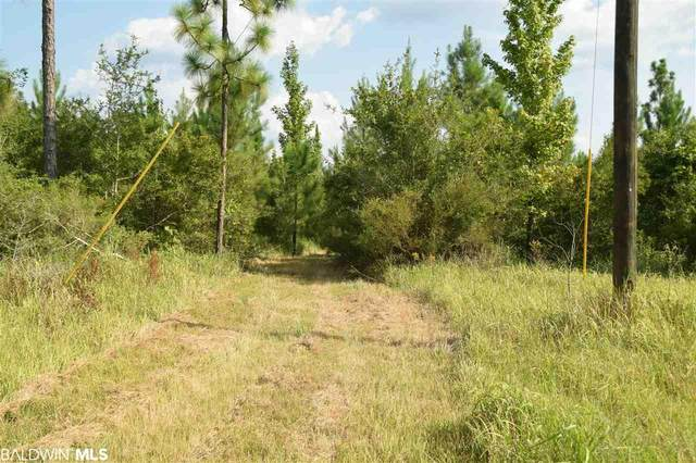 0 Chafin Road, Bay Minette, AL 36507 (MLS #302181) :: Sold Sisters - Alabama Gulf Coast Properties