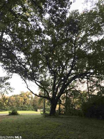 1 Styx River Rd, Stapleton, AL 36578 (MLS #302239) :: JWRE Powered by JPAR Coast & County