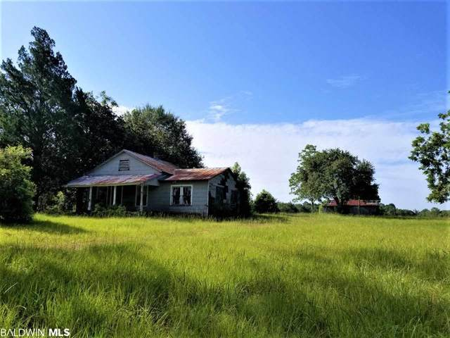 14760 County Road 64, Loxley, AL 36551 (MLS #302346) :: Ashurst & Niemeyer Real Estate