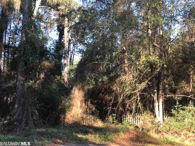 Lot 220 Scenic Highway 98, Fairhope, AL 36532 (MLS #302359) :: The Kim and Brian Team at RE/MAX Paradise