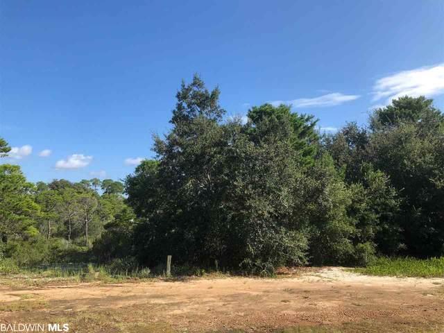 Oak Drive, Orange Beach, AL 36561 (MLS #302438) :: JWRE Powered by JPAR Coast & County