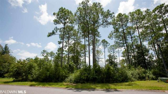 0 Bay Point Drive, Foley, AL 36530 (MLS #302459) :: Elite Real Estate Solutions