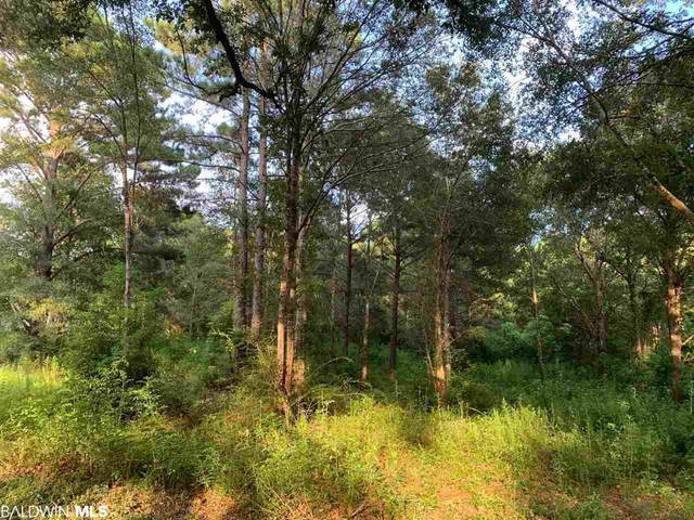 Lot 4 Young Street, Fairhope, AL 36532 (MLS #302606) :: EXIT Realty Gulf Shores