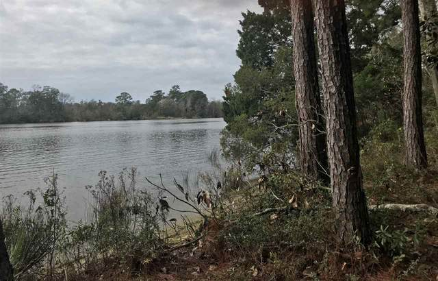 3517 Fish River Road, Foley, AL 36535 (MLS #302654) :: Mobile Bay Realty
