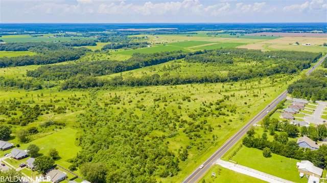 0 County Road 55, Foley, AL 36535 (MLS #303046) :: Elite Real Estate Solutions