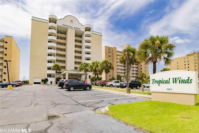 1003 W Beach Blvd #503, Gulf Shores, AL 36542 (MLS #303358) :: Ashurst & Niemeyer Real Estate