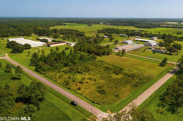 10750 County Road 95, Elberta, AL 36530 (MLS #303827) :: JWRE Powered by JPAR Coast & County