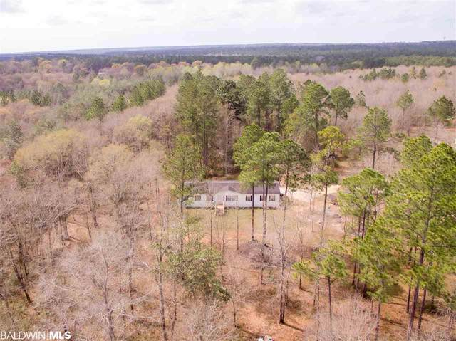 53875 Modelle Bryars Rd, Perdido, AL 36562 (MLS #304318) :: JWRE Powered by JPAR Coast & County