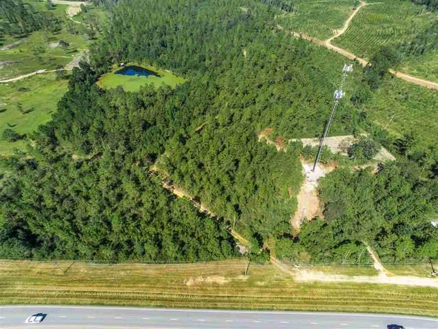 39449 S St Hwy 59, Bay Minette, AL 36527 (MLS #304336) :: Alabama Coastal Living