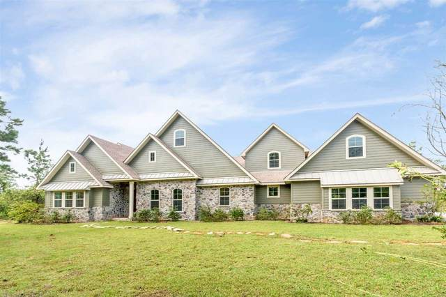 3385 Riverview Pointe Dr, Theodore, AL 36582 (MLS #304365) :: JWRE Powered by JPAR Coast & County