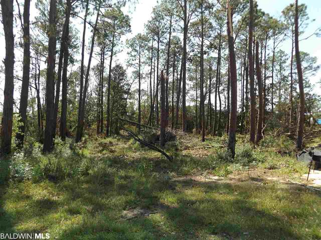 0 Trevino Dr, Gulf Shores, AL 36542 (MLS #304734) :: Alabama Coastal Living