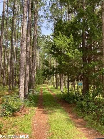 10828 Deer Foot Lane, Elberta, AL 36530 (MLS #304790) :: Alabama Coastal Living
