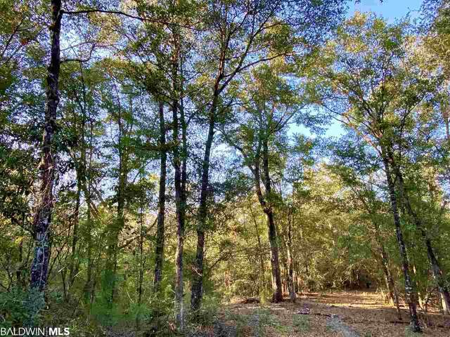0 Chunchula Landfill Road, Chunchula, AL 36521 (MLS #305120) :: Maximus Real Estate Inc.
