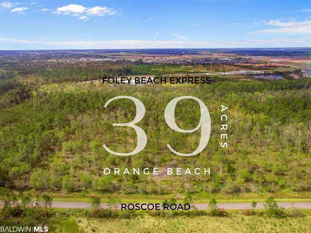 0 Roscoe Rd, Orange Beach, AL 36561 (MLS #305516) :: Bellator Real Estate and Development