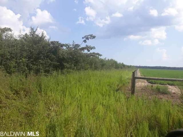 (D) Penton Road, Jay, FL 32570 (MLS #305907) :: Dodson Real Estate Group
