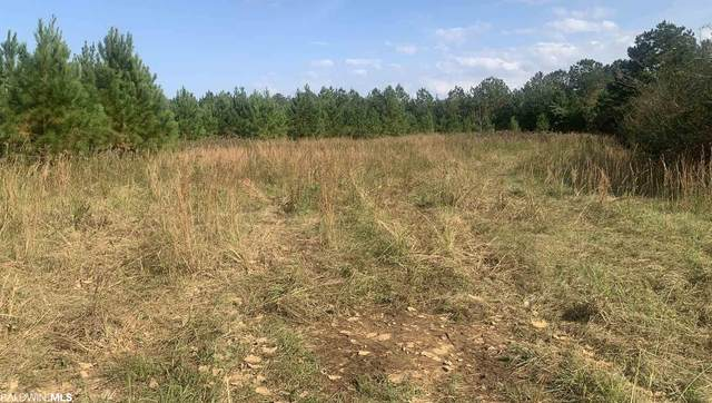 0 Cc Road, Uriah, AL 36480 (MLS #306292) :: Dodson Real Estate Group