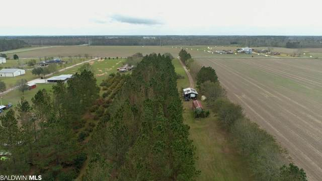 20765 County Road 48, Robertsdale, AL 36567 (MLS #306666) :: Gulf Coast Experts Real Estate Team