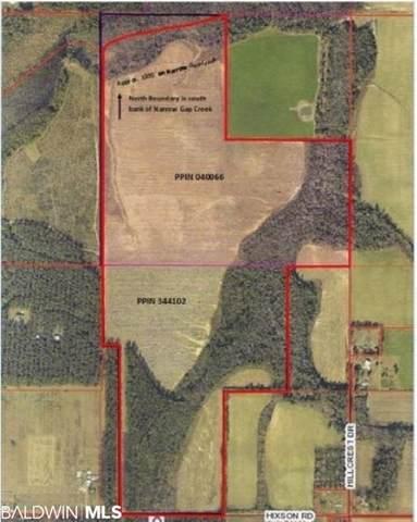 Hixson Road Hixson Road, Elberta, AL 36530 (MLS #307136) :: Elite Real Estate Solutions