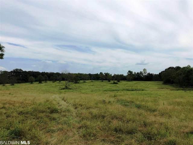 0 County Road 64, Loxley, AL 36551 (MLS #307777) :: Elite Real Estate Solutions