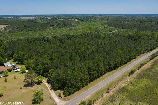 24690 Newport Road, Robertsdale, AL 36567 (MLS #307873) :: Dodson Real Estate Group