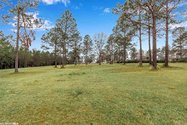 29542 County Road 112, Robertsdale, AL 36567 (MLS #308153) :: Dodson Real Estate Group