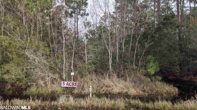 0 County Road 6, Gulf Shores, AL 36542 (MLS #308529) :: Levin Rinke Realty