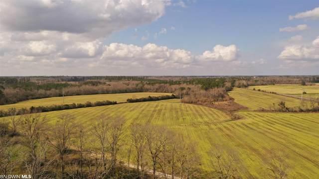 4801 N Pine Barren Road, Century, FL 32535 (MLS #310175) :: Bellator Real Estate and Development