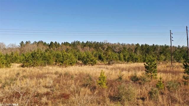 1 Old Atmore Road, Flomaton, AL 36441 (MLS #310191) :: Levin Rinke Realty