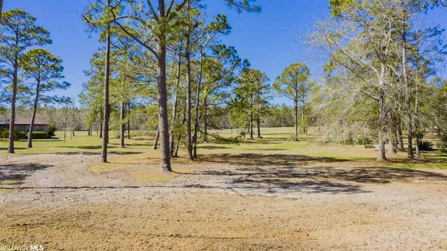 0 E Quarry Dr, Josephine, AL 36530 (MLS #310454) :: Ashurst & Niemeyer Real Estate