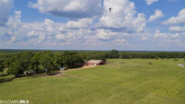 17188 Bee Gum Rd, Bay Minette, AL 36507 (MLS #311289) :: Elite Real Estate Solutions