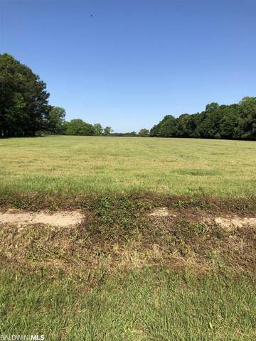 Lot 3 Gopher Court, Elberta, AL 36530 (MLS #311633) :: Sold Sisters - Alabama Gulf Coast Properties