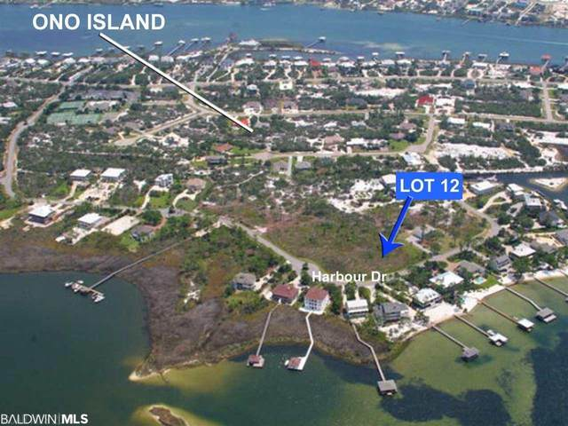 30538 Harbour Drive, Orange Beach, AL 36561 (MLS #311654) :: Bellator Real Estate and Development