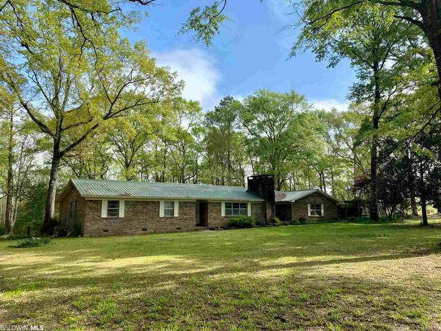 1069 Cemetery Road, Repton, AL 36475 (MLS #312187) :: Elite Real Estate Solutions