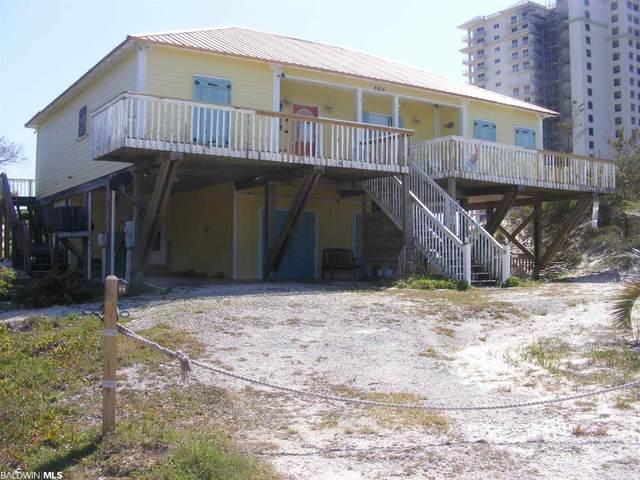 8804 Dolphin Lane, Gulf Shores, AL 36542 (MLS #312221) :: EXIT Realty Gulf Shores