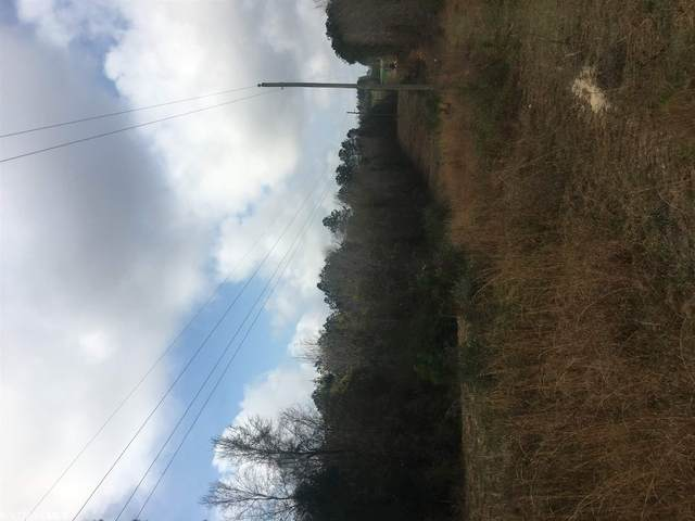 Pea Ridge Road, Brewton, AL 36426 (MLS #312225) :: Sold Sisters - Alabama Gulf Coast Properties