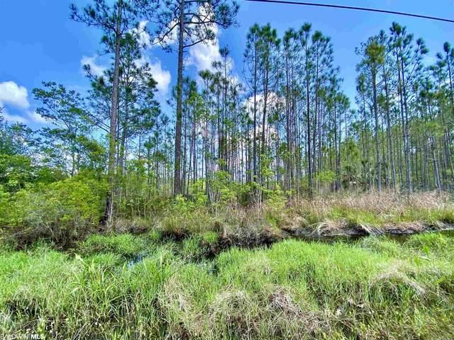 0 County Road 6, Gulf Shores, AL 36542 (MLS #313064) :: Levin Rinke Realty