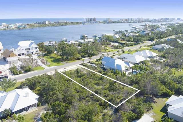 0 River Road, Orange Beach, AL 36561 (MLS #313682) :: Coldwell Banker Coastal Realty