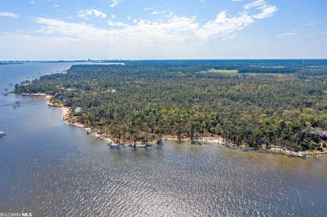 9700 County Road 99, Lillian, AL 36549 (MLS #313793) :: Sold Sisters - Alabama Gulf Coast Properties