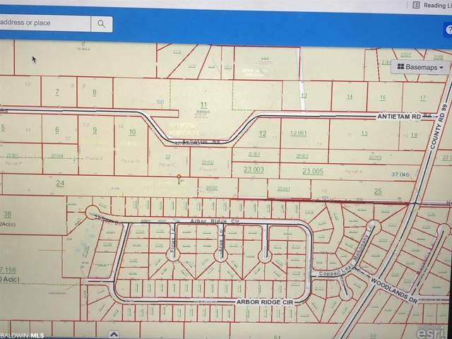 10791 County Road 99, Lillian, AL 36549 (MLS #313834) :: Bellator Real Estate and Development
