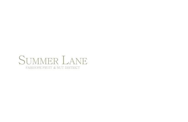 103 Summer Ln, Fairhope, AL 36532 (MLS #314021) :: Levin Rinke Realty
