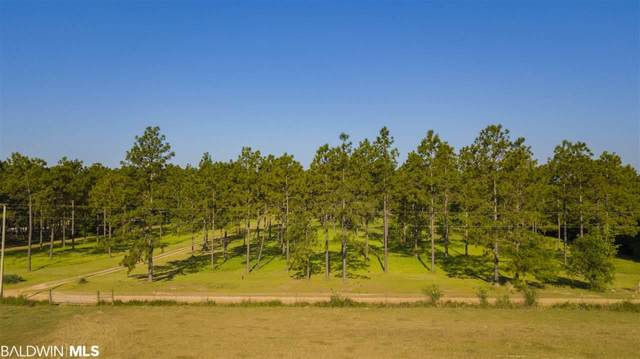 28685 Rose Run Rd, Robertsdale, AL 36567 (MLS #314208) :: Dodson Real Estate Group