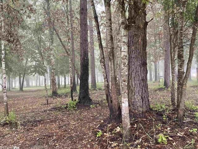 25402 County Road 38, Summerdale, AL 36580 (MLS #315138) :: Dodson Real Estate Group